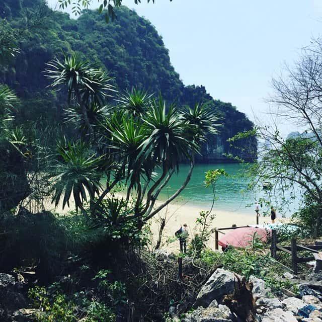 Ambiente Reisen in Vietnam